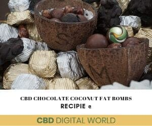 CBD Chocolate Nut Fat Bomb