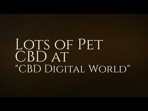 CBD for Cats at CBD Digital World