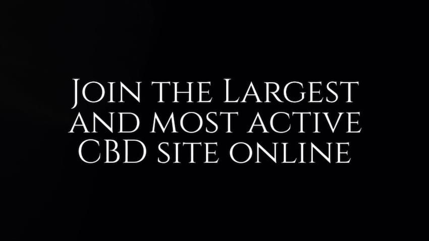 Join the largest CBD Site